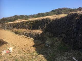 220土谷の石垣.jpg