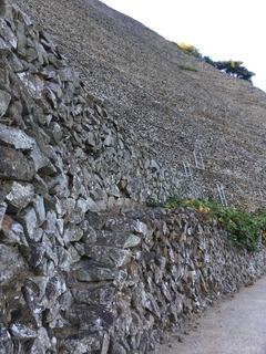 830圧倒的な石垣.jpg